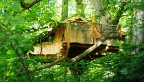 chateau de kermenguy cabane jonquille