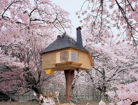 vue rapprochée cabane tea house japon