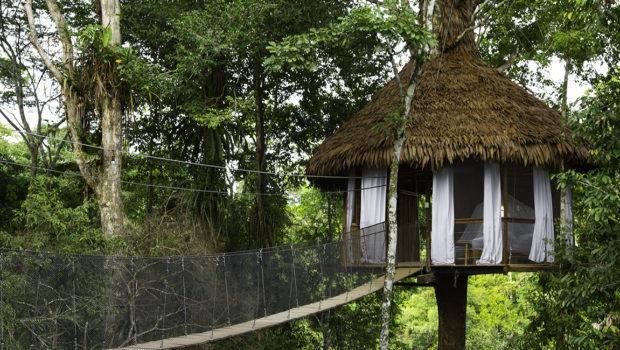 les plus belles cabanes amazoniennes mag la cabane en l 39 air. Black Bedroom Furniture Sets. Home Design Ideas