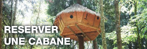 Réservez une cabane dans les arbres